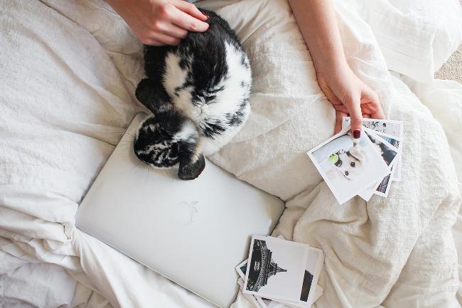 Travailler en Freelance sans tomber dans les distractions