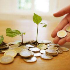 Quelles sont les meilleures manières de faire fructifier son argent en 2021 ?